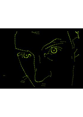 LaserCam